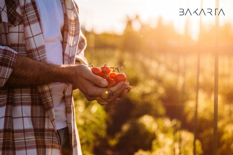 Normativa de la trazabilidad alimentaria